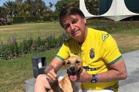 Bolsonaro vai sancionar projeto que aumenta pena a maus-tratos a cães e gatos