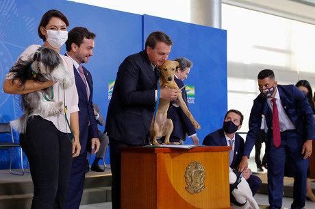Bolsonaro sancionou lei contra maus-tratos