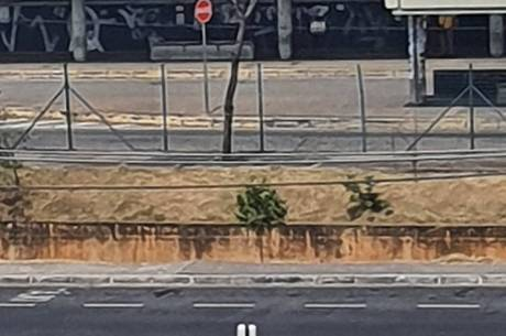 Estação de ônibus é fechada por falsa ameaça de bomba