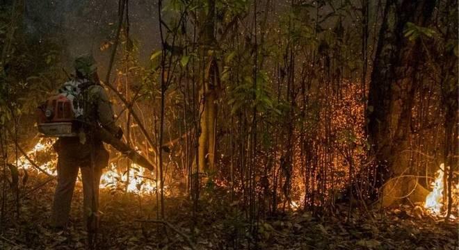 Incêndios no Pantanal atingiram grandes proporções e já consumiram quase 3 milhões de hectares do bioma no Brasil
