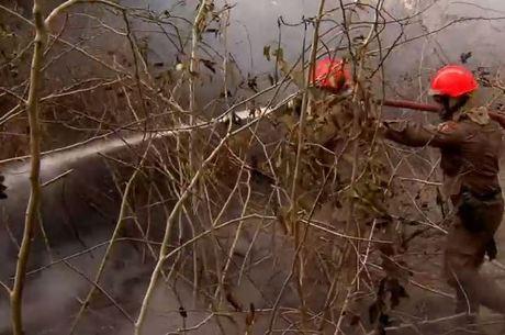 Fogo destruiu 1,4 milhão de hectares de vegetação