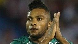 Colômbia anuncia convocação, e Borja vai desfalcar o Palmeiras  ()