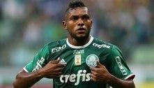 Os motivos que fizeram o Palmeiras não inscrever Borja na Libertadores