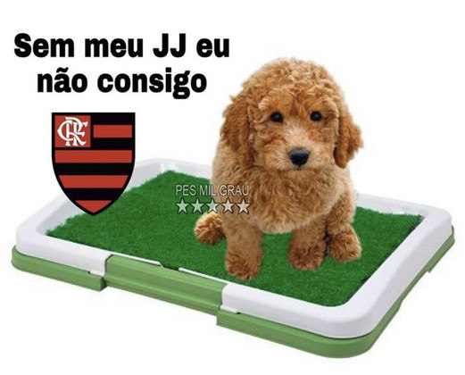 Brasileirão: os memes de Atlético-GO 0 x 3 Flamengo