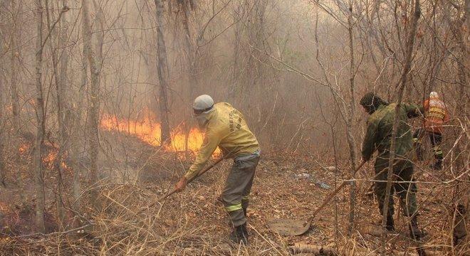 Novos incêndios foram registrados em alguns pontos do Pantanal nos últimos dias, após fogo diminuir no bioma