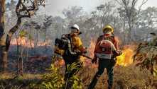 Focos de incêndios crescem 22% no DF, mas área queimada cai 50%