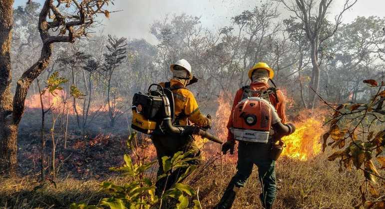 Brasil tem registrado alta no número de queimadas