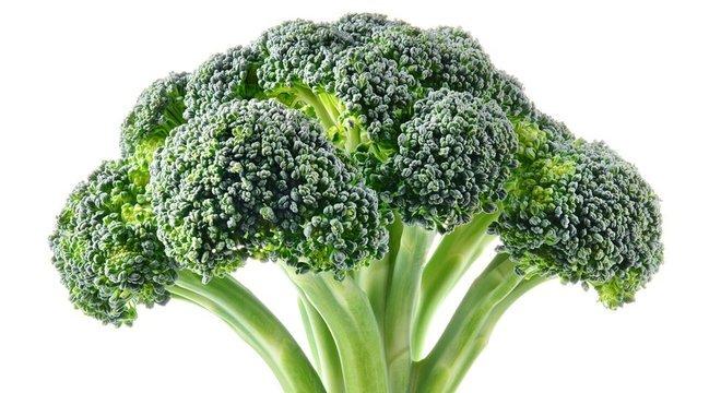 Brócolis é rico em vitamina A