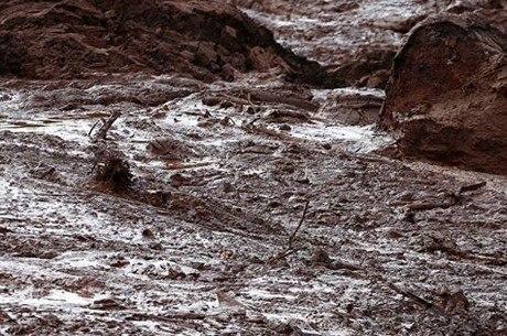 Tragédia deixou ao menos 259 mortos em Minas