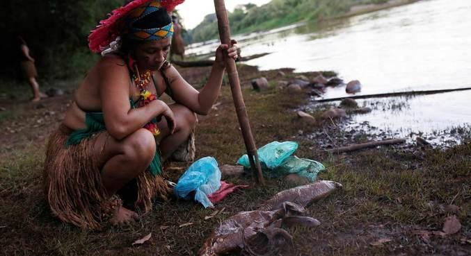 Além de danos sociais e econômicos, tragédia de Brumadinho causou 270 mortes
