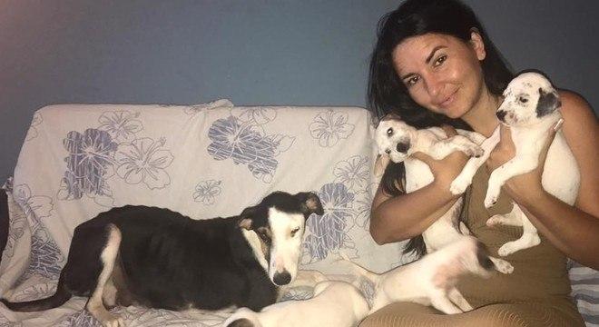 Os animais receberam tratamento e voluntários ajudam com os custos