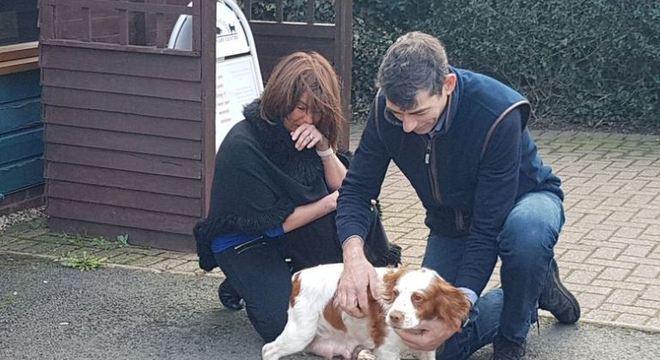 A família não conteve as lágrimas ao reencontrar o animal de estimação