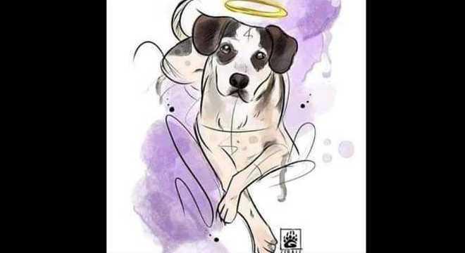 Arte em homenagem a cadelinha