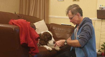 Pai da tutora alimenta e dá água para o cão todos os dias