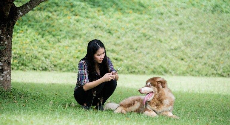 Usuário deve posicionar a câmera do celular na face do animal para que reconhecimento seja feito