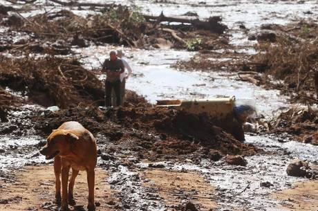 Tragédia em Brumadinho tem 299 desaparecidos