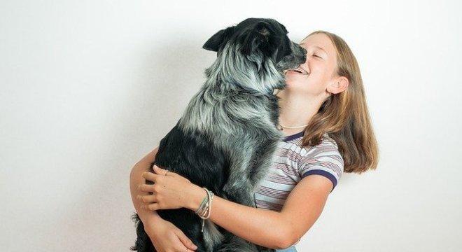 Os cães também reagem ao receber carinho em um dia triste