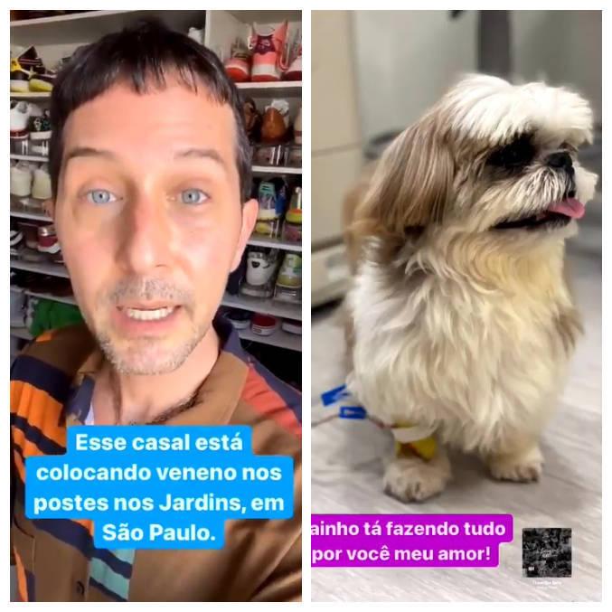 Arlindo Grund fez alerta após cachorro de estimação ser envenenado