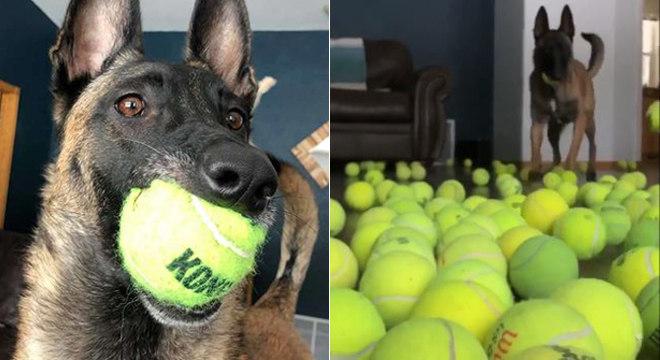 400 bolas espalhadas pela casa