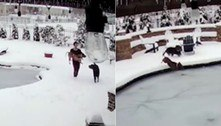 Cachorro cai em piscina congelada e fica mais de 1 minuto sob o gelo