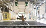 A visita à montadora é parte de uma ação da Hyundai. A Petz entrou como parceira na doação de 500 quilos de ração ao grupo de apoio