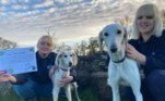 O executivo chefe da Dogs Trust, Owen Sharp, encorajou as pessoas interessadas a entrarem em contato