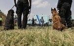 Há vários dias, a atividade volta lentamente à pista do aeroporto.Após duas semanas de férias forçadas, a equipe canina pode voltar logo à ação