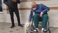Cadela espera dono doente durante 6 dias diante de hospital turco