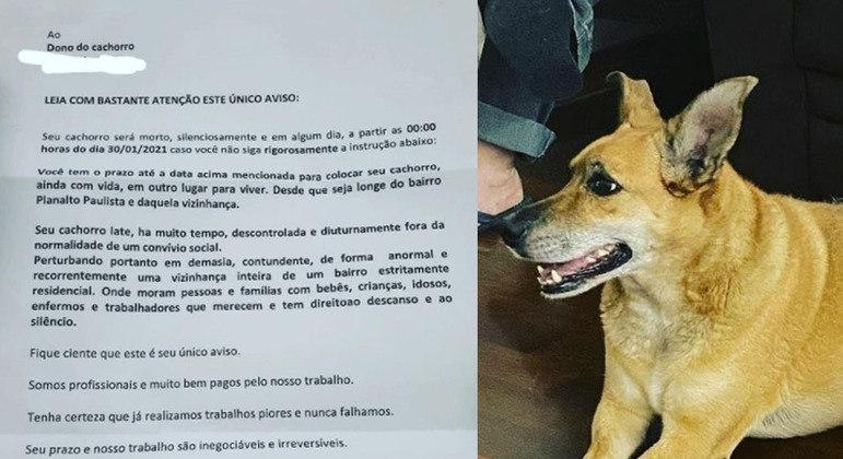 Em bilhete anônimo, cadelinha Sol foi jurada de morte