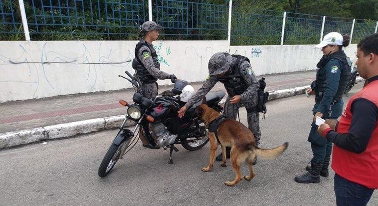 Cães da Polícia Militar são utilizados para coibir o tráfico de drogas