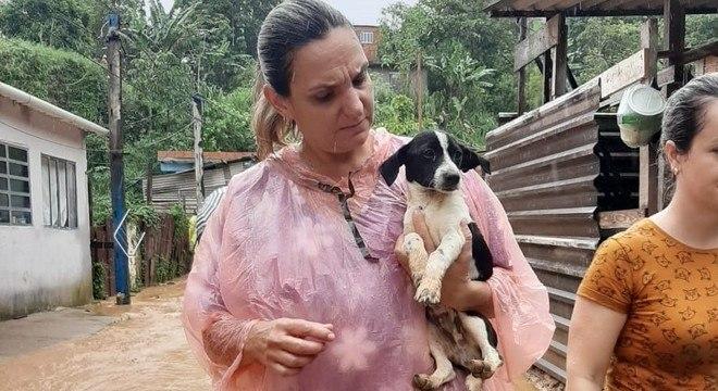 Ao todo, já foram resgatados 33 animais na área atingida por deslizamentos