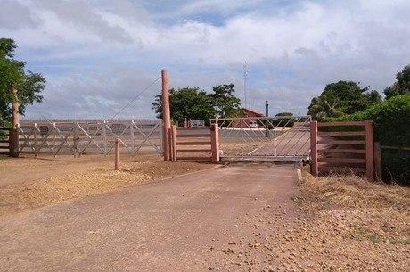 Fazenda é dedicada à criação de gado de corte