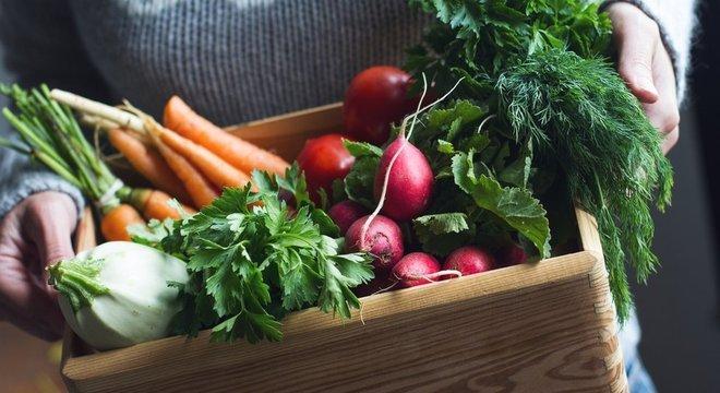 Sítio produz oito tipo de hortaliças, além das folhas, mas principal desafio é manter clientes fidelizados