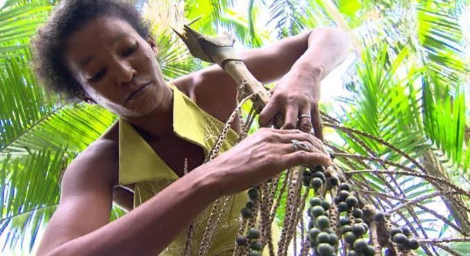 A produção do açaí muitas vezes é marcado pelo trabalho degradante de adultos e crianças