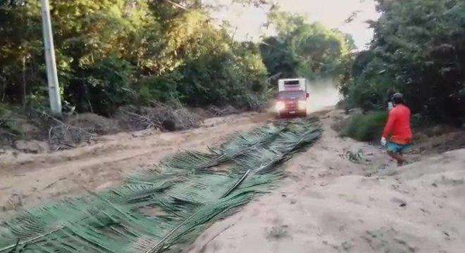 Para resolver problemas logísticos, é preciso criatividade, como usar folhagem para desatolar caminhões