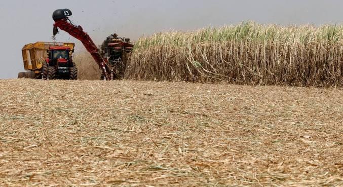 Se confirmada, a queda na produção de grãos de 2021 será a primeira desde 2018