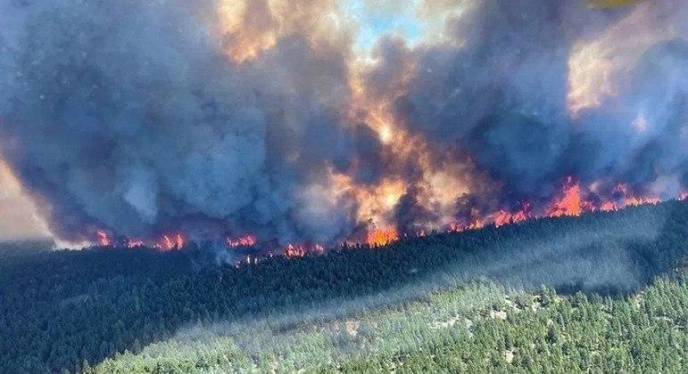 Dezenas de focos de incêndio na Columbia Britânica preocupam o governo canadense
