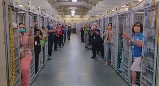 Todos os cães do abrigo foram adotados
