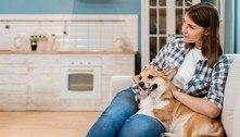 Comportamento dos cães depende da personalidade de seus donos
