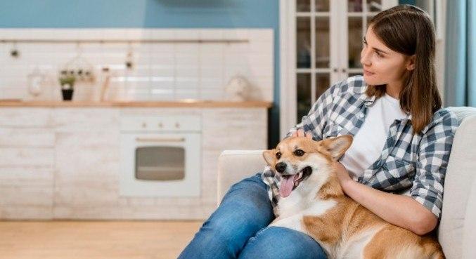 Cães têm tendência a serem menos medrosos com donos extrovertidos