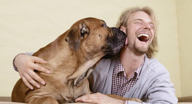 cão lambendo dono