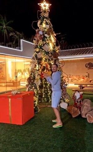 Carlinhos exibiu árvore de Natal