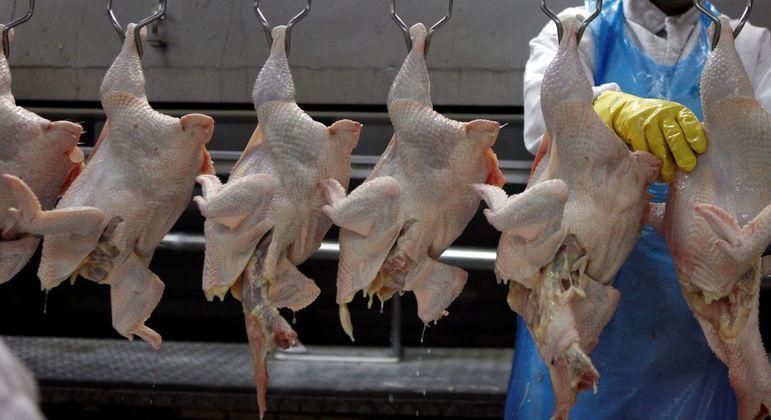 Carne de frango em frigorífico em Itatinga (SP)