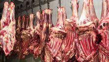 Comércio irregular de carne é alvo de operação no interior paulista