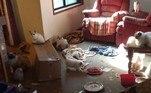 Além de lixo e fezes por todos os cantos, as instalações também apresentavam tigelas com carne crua estragada e até filhotes de gato mortos
