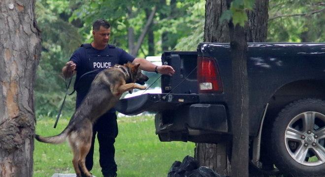 Policial e cachorro inspecionam carro usado em invasão da residência de Trudeau