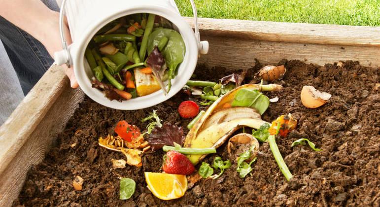 Casca de alimentos - benefícios e melhores formas de utilizar
