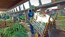 Com ajuda do Exército, Ceagesp distribui alimentos em Araraquara
