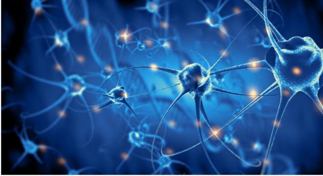 Esclerose múltipla faz com que o sistema imune ataque os nervos