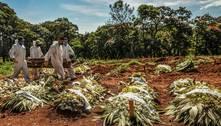 Setor funerário prevê o triplo de mortes diárias no pico da pandemia